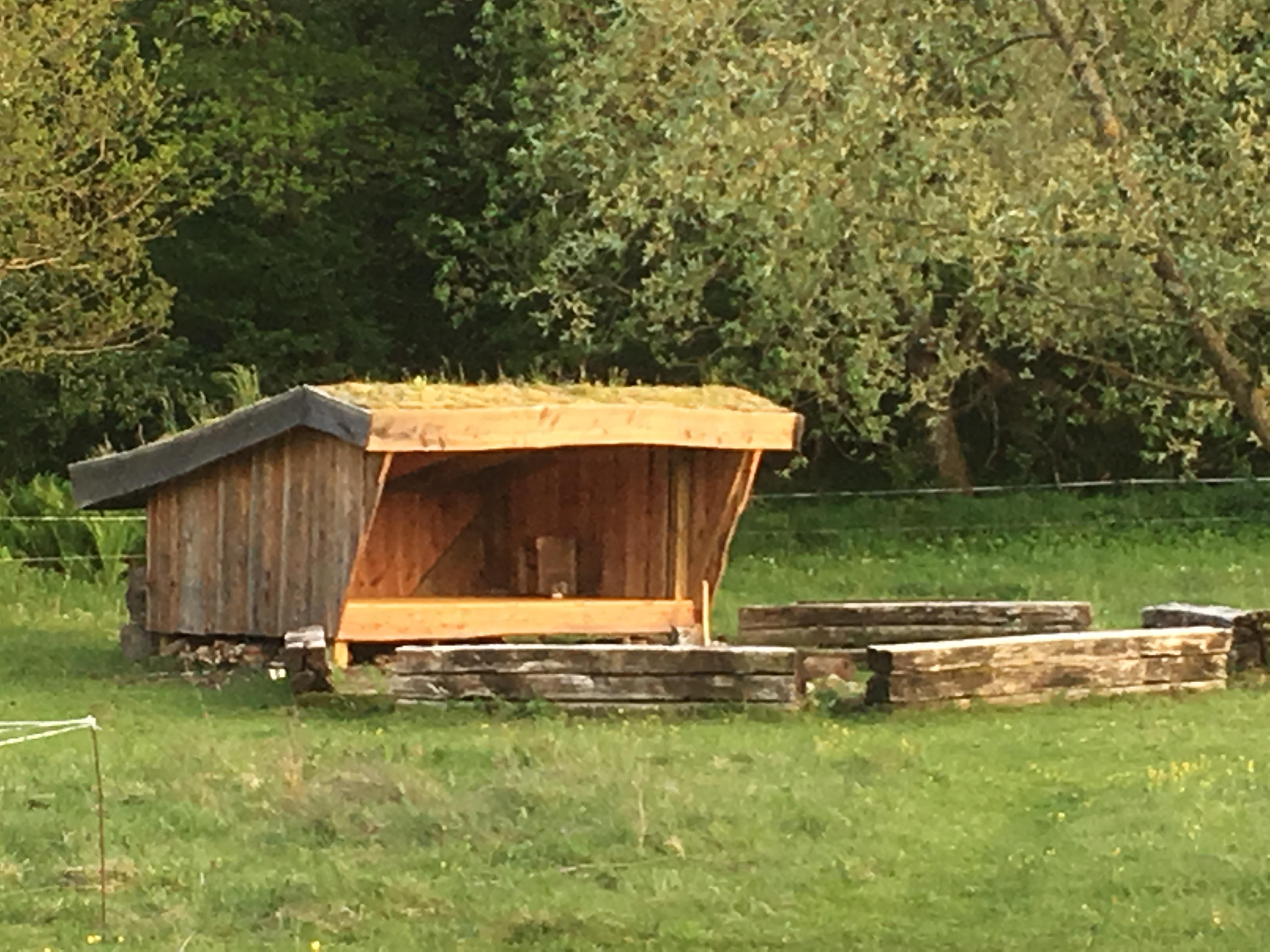 Shelter og bålplads på fællesarealet i Nonbo Hede